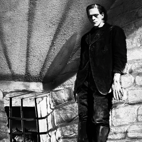 Jung and the Classics: Experiencing Frankenstein from a Theatrical Perspective